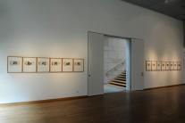 Roemer - und Pelizaeus - Museo Hildesheim